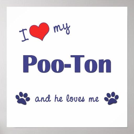 I Love My Poo-Ton (Male Dog) Poster Print