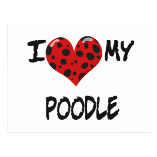 I love my Poodle Post Cards