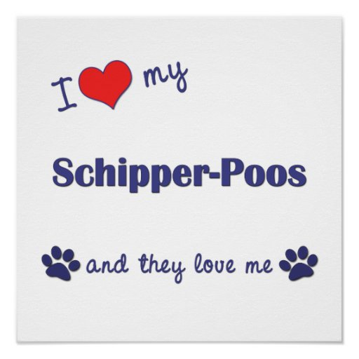 I Love My Schipper-Poos (Multi Dogs) Poster Print