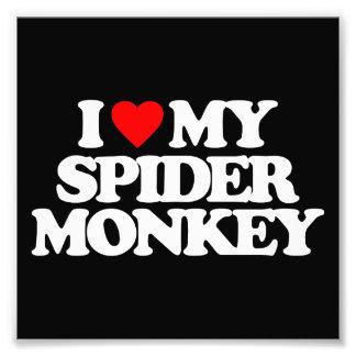 I LOVE MY SPIDER MONKEY PHOTO