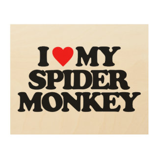 I LOVE MY SPIDER MONKEY WOOD CANVASES