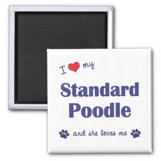 I Love My Standard Poodle Female Dog Refrigerator Magnets