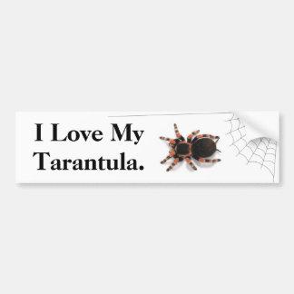 I Love my Tarantula Bumper Sticker