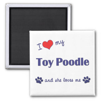 I Love My Toy Poodle (Female Dog) Square Magnet