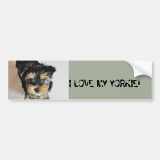 I love my yorkie! bumper sticker
