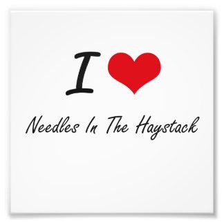 I love Needles In The Haystack Photo Art
