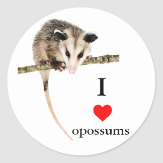 I Love Opossums Sticker