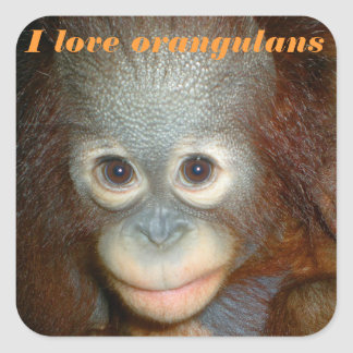I Love Orangutan Square Sticker