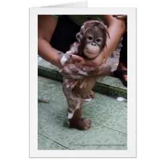 I Love Orangutans Baby Jackat Card