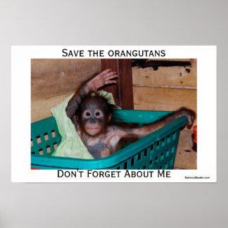 I Love Orangutans Poster