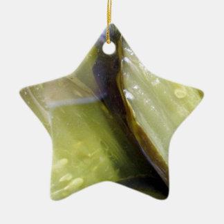 I Love Pickles Ceramic Ornament