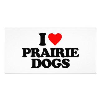 I LOVE PRAIRIE DOGS PHOTO CARDS