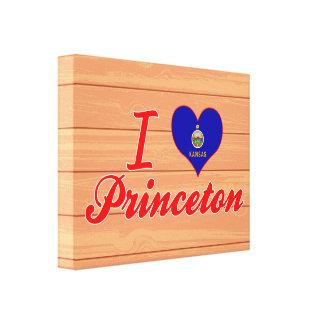 I Love Princeton, Kansas Stretched Canvas Print