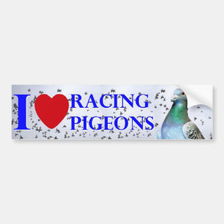 I love racing pigeons bumper sticker