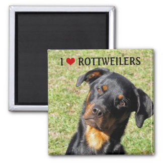 I Love Rottweilers Magnet