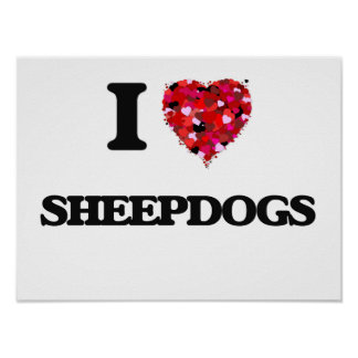 I love Sheepdogs Poster
