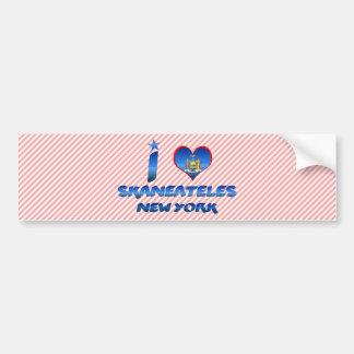 I love Skaneateles, New York Bumper Sticker