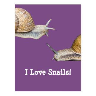 I Love Snails Snail Design Postcard
