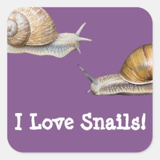 I Love Snails Snail Design Square Sticker