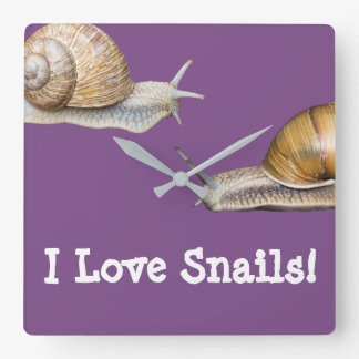 I Love Snails Snail Design Square Wall Clock
