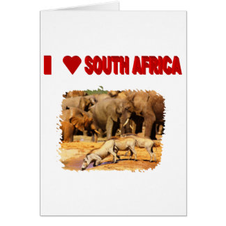 I Love South Africa Warthogs Card