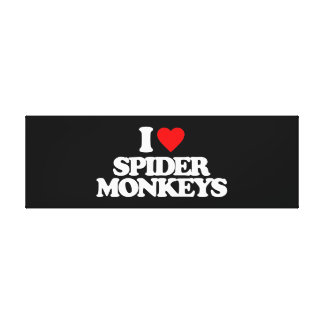 I LOVE SPIDER MONKEYS CANVAS PRINTS