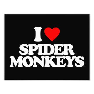 I LOVE SPIDER MONKEYS PHOTO PRINT