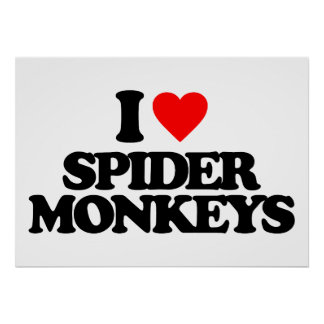 I LOVE SPIDER MONKEYS PRINT