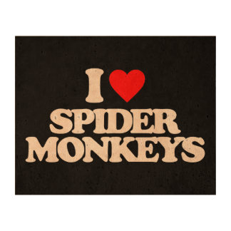 I LOVE SPIDER MONKEYS PHOTO CORK PAPER