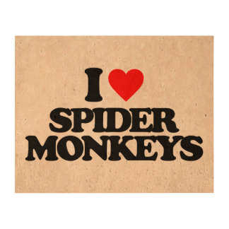 I LOVE SPIDER MONKEYS CORK PAPER PRINTS