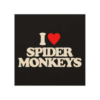 I LOVE SPIDER MONKEYS WOOD CANVAS