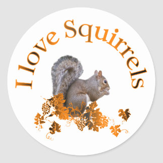 I Love Squirrels Stickers