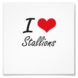 I love Stallions Photograph