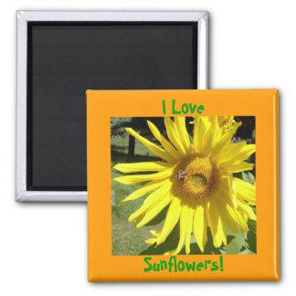 I Love, Sunflowers! Magnet