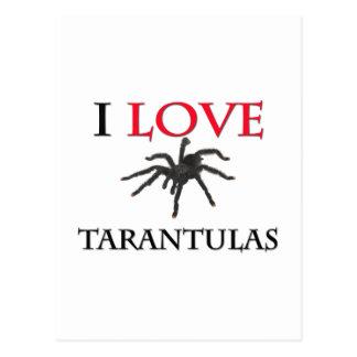 I Love Tarantulas Postcard