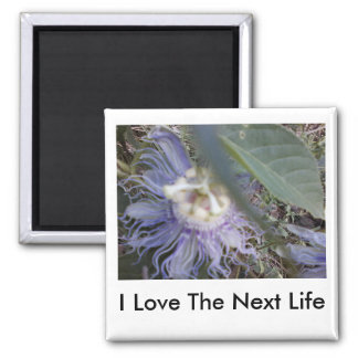 I love the next life magnet