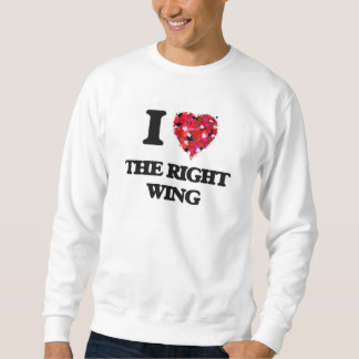 I love The Right Wing Pull Over Sweatshirts
