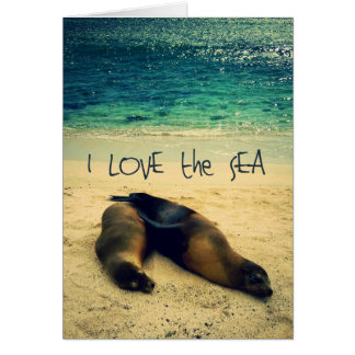 I love the Sea quote beach with sea lions Card
