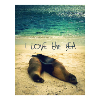 I love the Sea quote beach with sea lions Letterhead