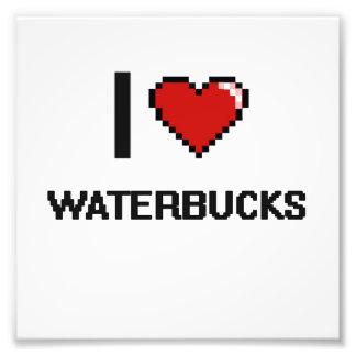 I love Waterbucks Digital Design Photograph