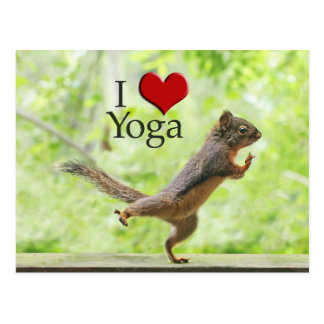 I Love Yoga Squirrel Postcard