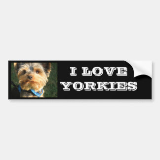 I Love Yorkies Bumper Sticker