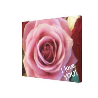 I Love YOU Beautiful Pink Rose Close up Picture Canvas Print