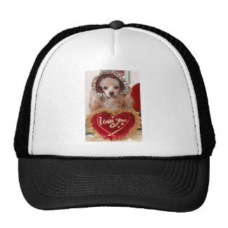 I Love You Poodle Dog Trucker Hat