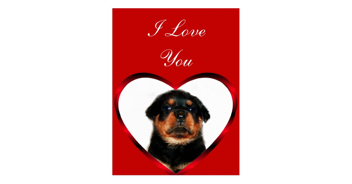 I Love You Rottweiler puppy greeting card | Zazzle.ca