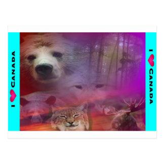I Luv Canada Postcard