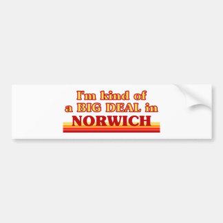 I´m kind of a big deal in Norwich Bumper Sticker