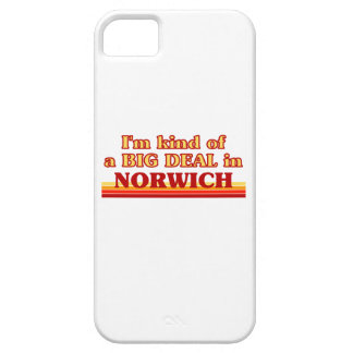 I´m kind of a big deal in Norwich Case For The iPhone 5