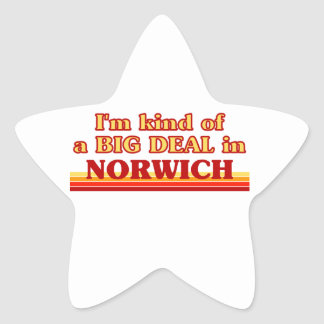 I´m kind of a big deal in Norwich Star Sticker