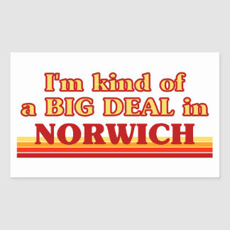 I´m kind of a big deal in Norwich Sticker